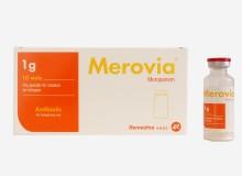Merovia 1g IV